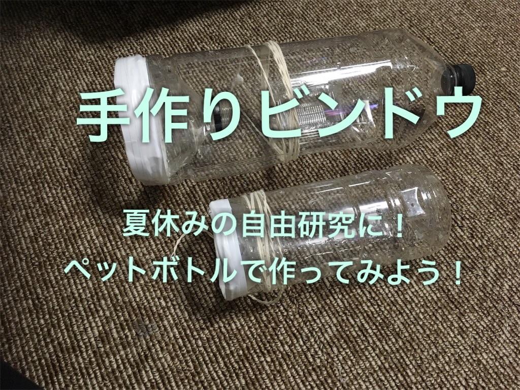 f:id:yumemiraitunagu:20200821132132j:plain