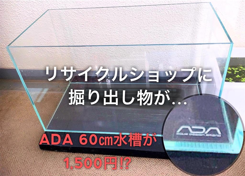 f:id:yumemiraitunagu:20200913101529j:plain