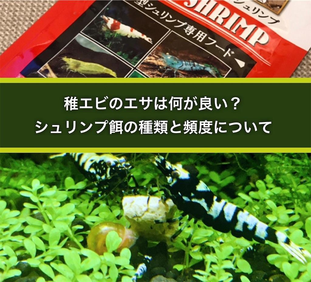 f:id:yumemiraitunagu:20200922215723j:plain