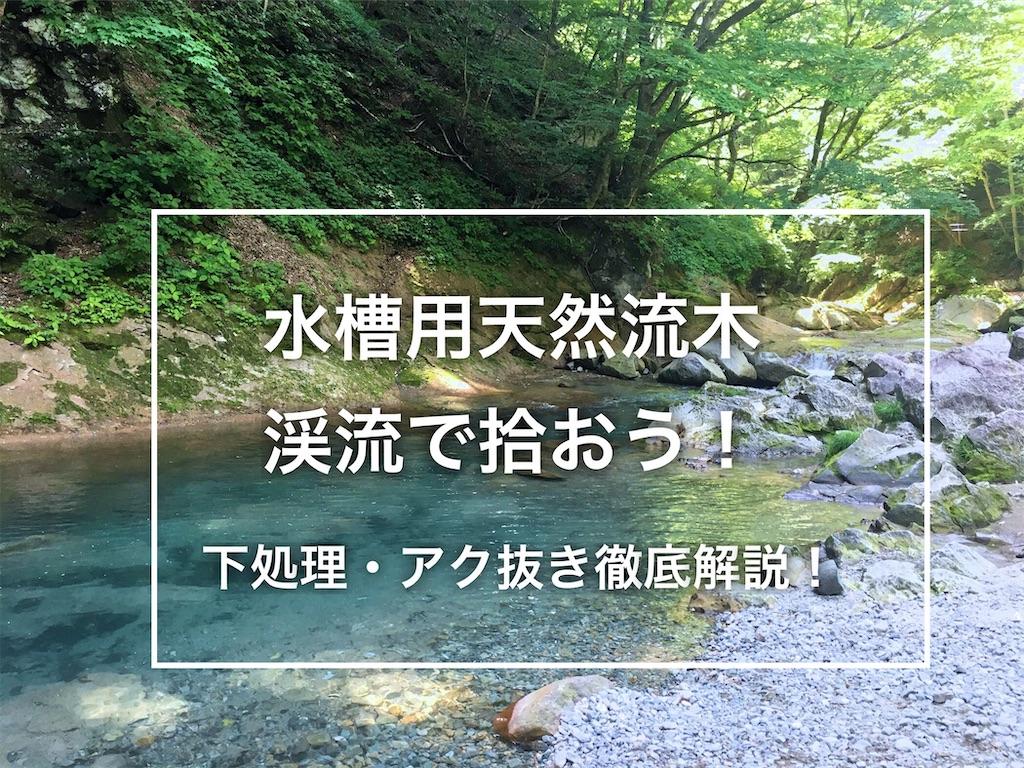 f:id:yumemiraitunagu:20201009105914j:plain
