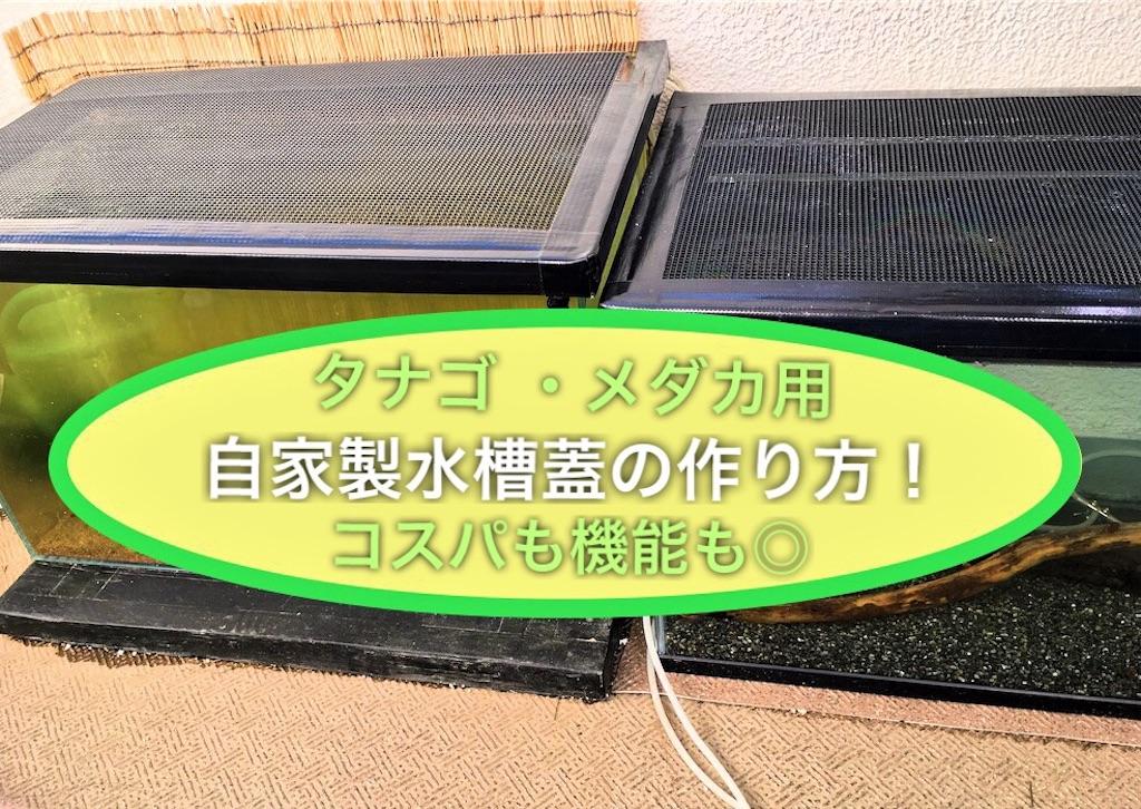 f:id:yumemiraitunagu:20210211105400j:plain