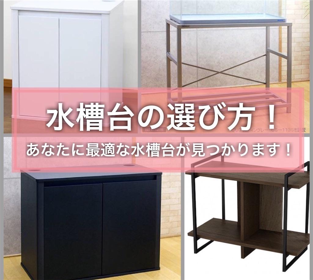 f:id:yumemiraitunagu:20210404201614j:plain