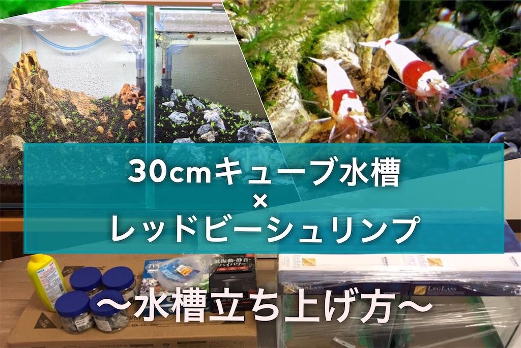 f:id:yumemiraitunagu:20210415051658j:plain