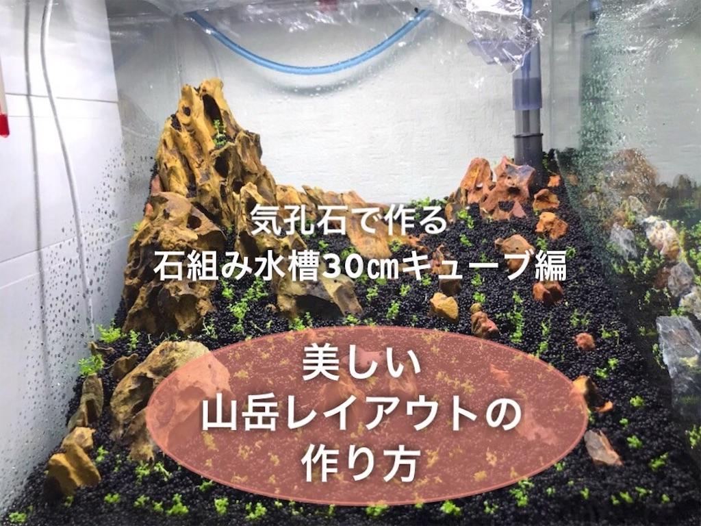 f:id:yumemiraitunagu:20210417064455j:plain
