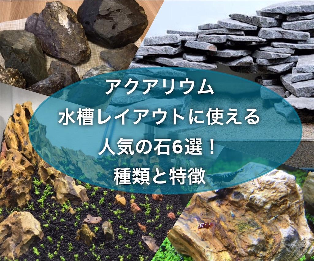 f:id:yumemiraitunagu:20210422124944j:plain