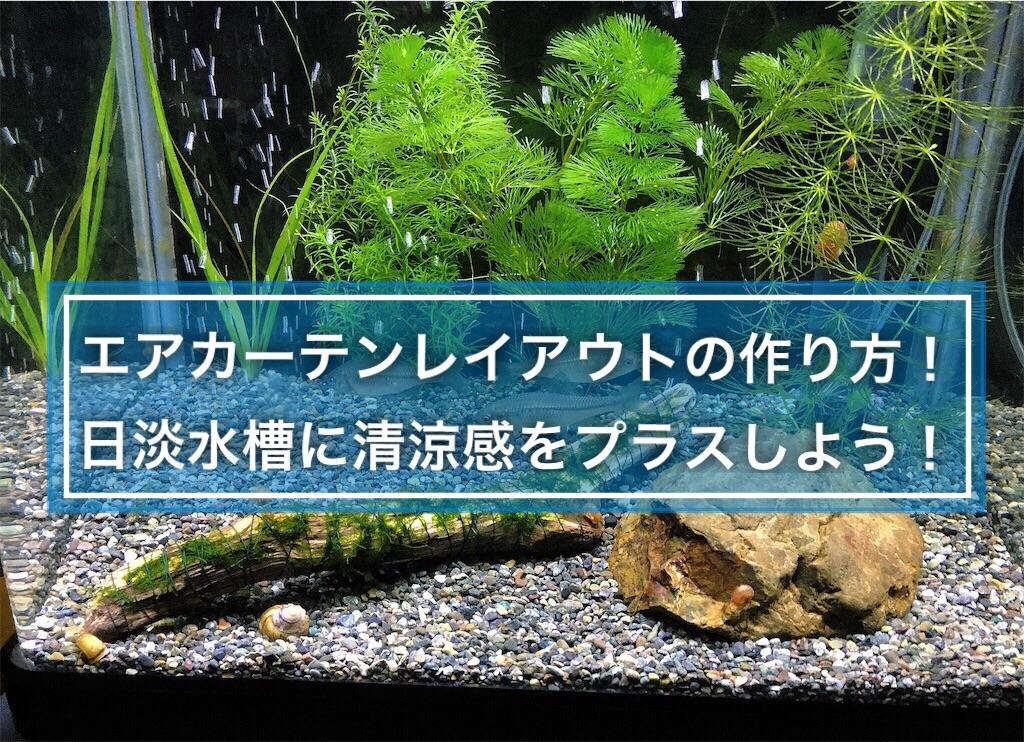 f:id:yumemiraitunagu:20210506234342j:plain