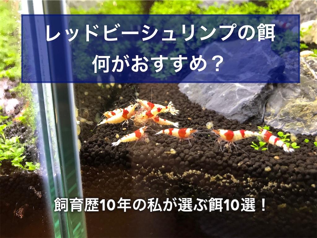 f:id:yumemiraitunagu:20210629003943j:plain