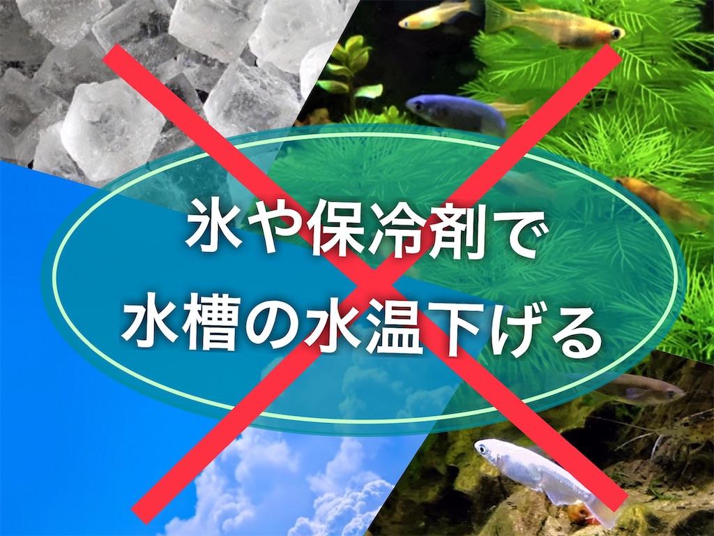 f:id:yumemiraitunagu:20210820081810j:plain