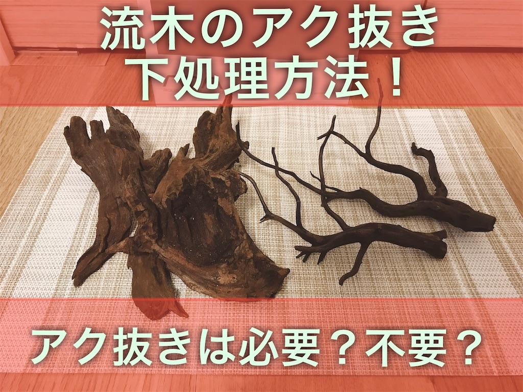 f:id:yumemiraitunagu:20210906105903j:plain