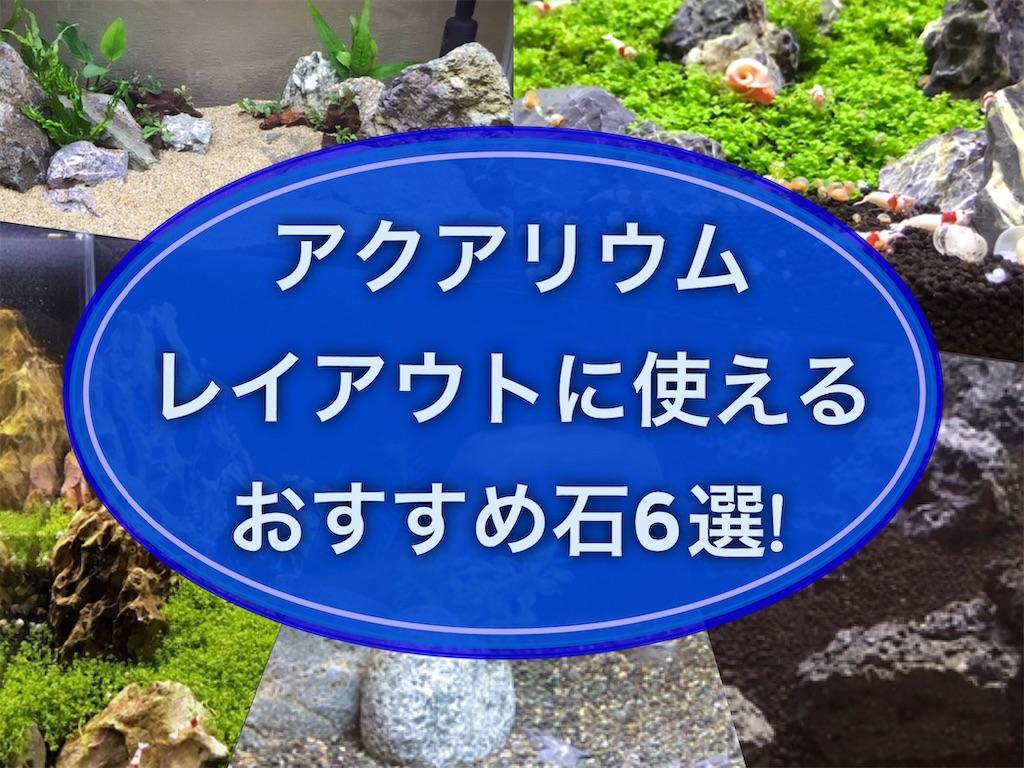 f:id:yumemiraitunagu:20210910155008j:plain
