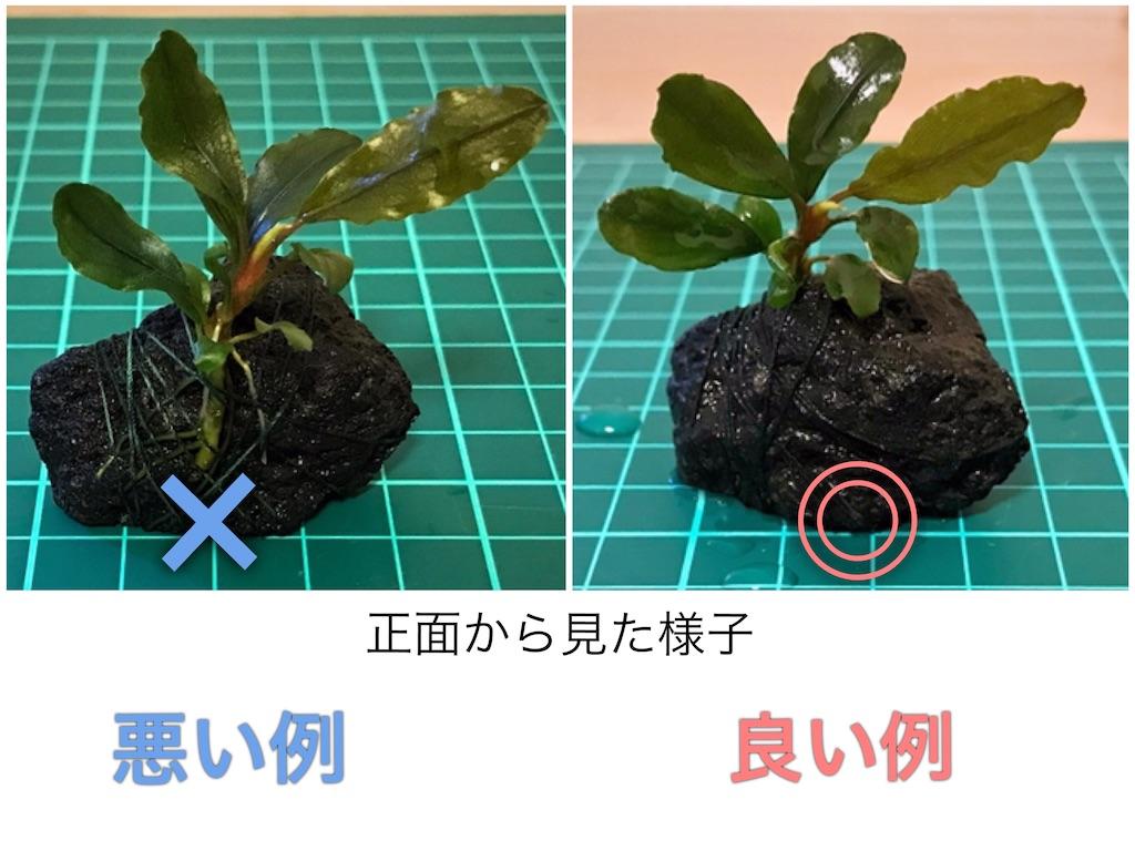 f:id:yumemiraitunagu:20210920123148j:plain