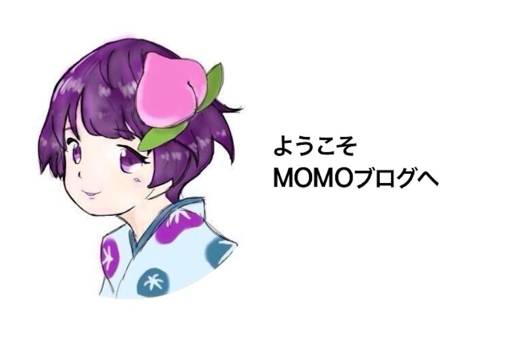 f:id:yumemiruwo:20181224123801j:image