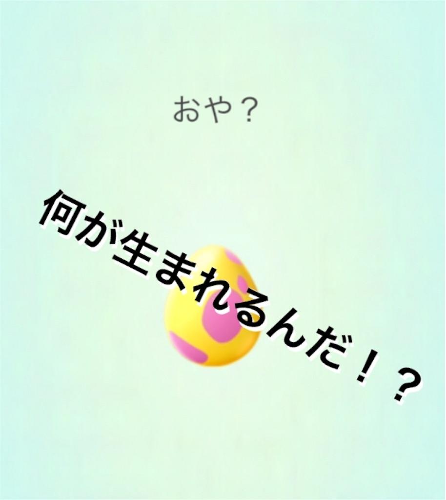 f:id:yumemiruwo:20190414195302j:image