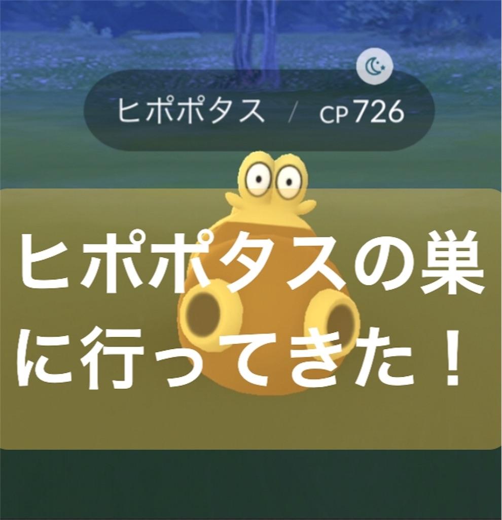 f:id:yumemiruwo:20190525224149j:image