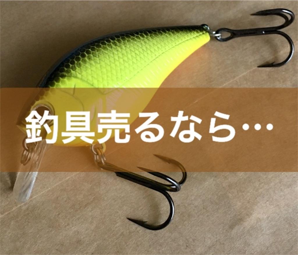 f:id:yumemiruwo:20190527094810j:image