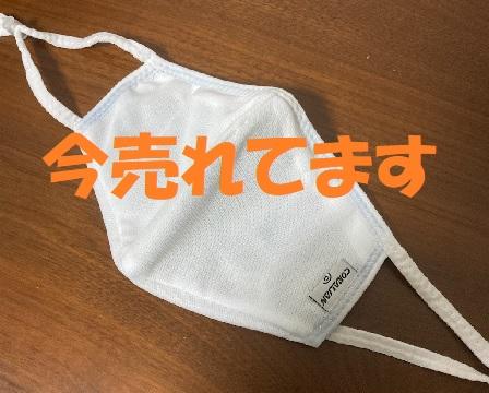 f:id:yumemiruwo:20201121094151j:plain