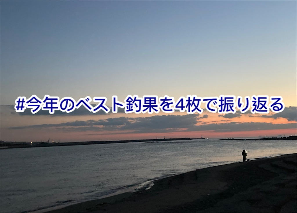 f:id:yumemiruwo:20201230071455j:image