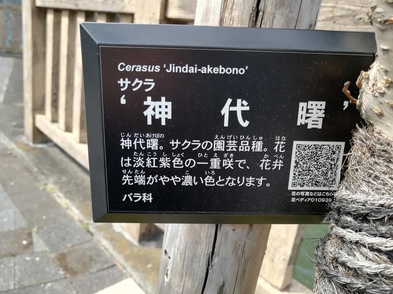 f:id:yumemizuki3vision:20190328085725j:plain