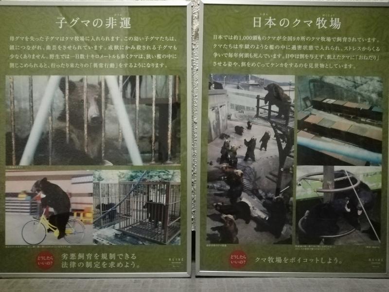 f:id:yumemizuki3vision:20190927000956j:plain
