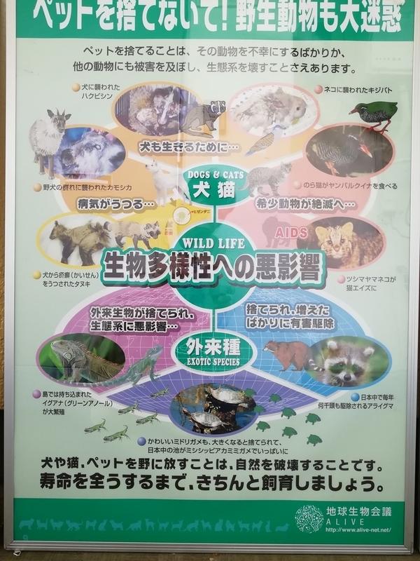 f:id:yumemizuki3vision:20190927001002j:plain