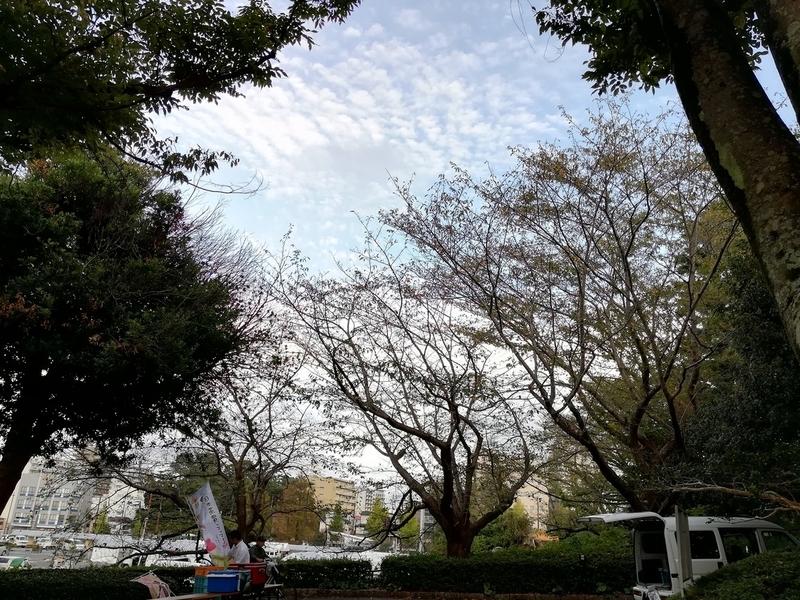 f:id:yumemizuki3vision:20191022004533j:plain