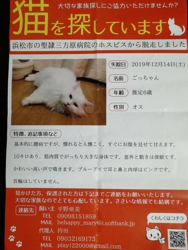 f:id:yumemizuki3vision:20200128210616j:plain