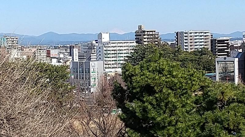 f:id:yumemizuki3vision:20210204111909j:plain