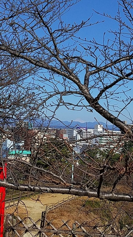 f:id:yumemizuki3vision:20210204111919j:plain