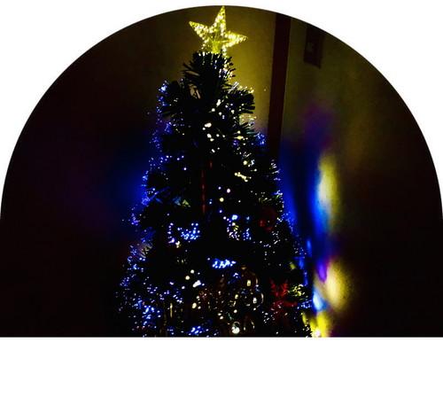 c_tree.jpg