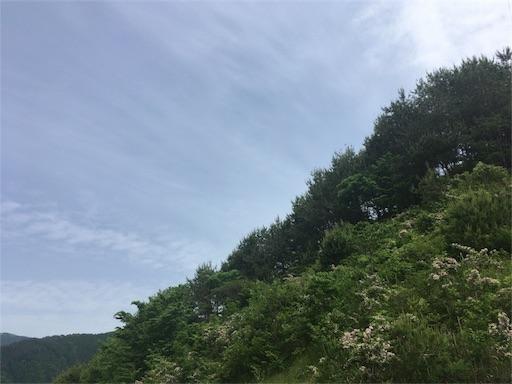 f:id:yumenoki2017:20180516141508j:image