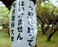 [看板]id:yumenokiroku