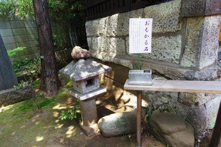 f:id:yumenoko:20210509200949j:plain