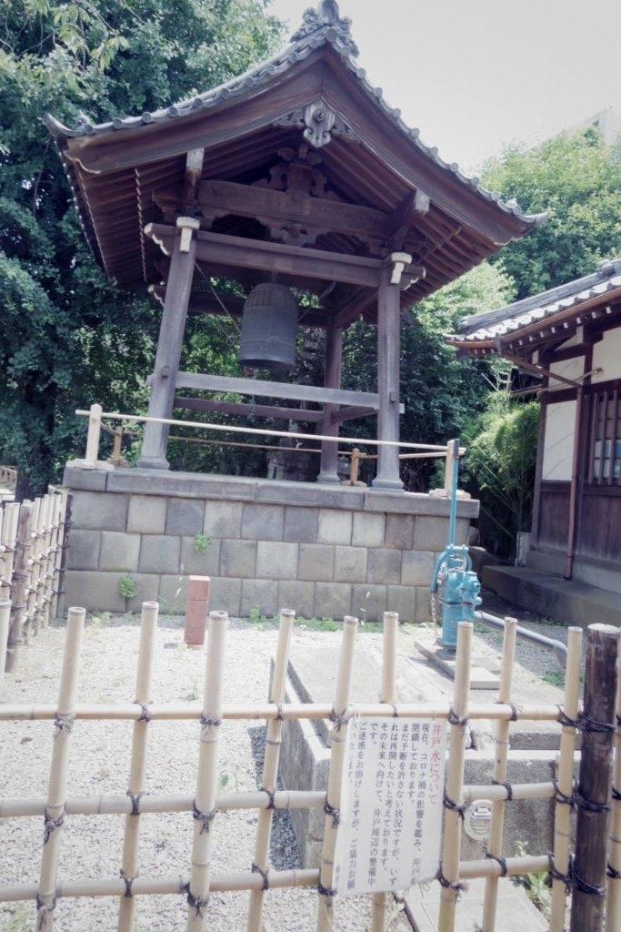 f:id:yumenoko:20210609213902j:plain