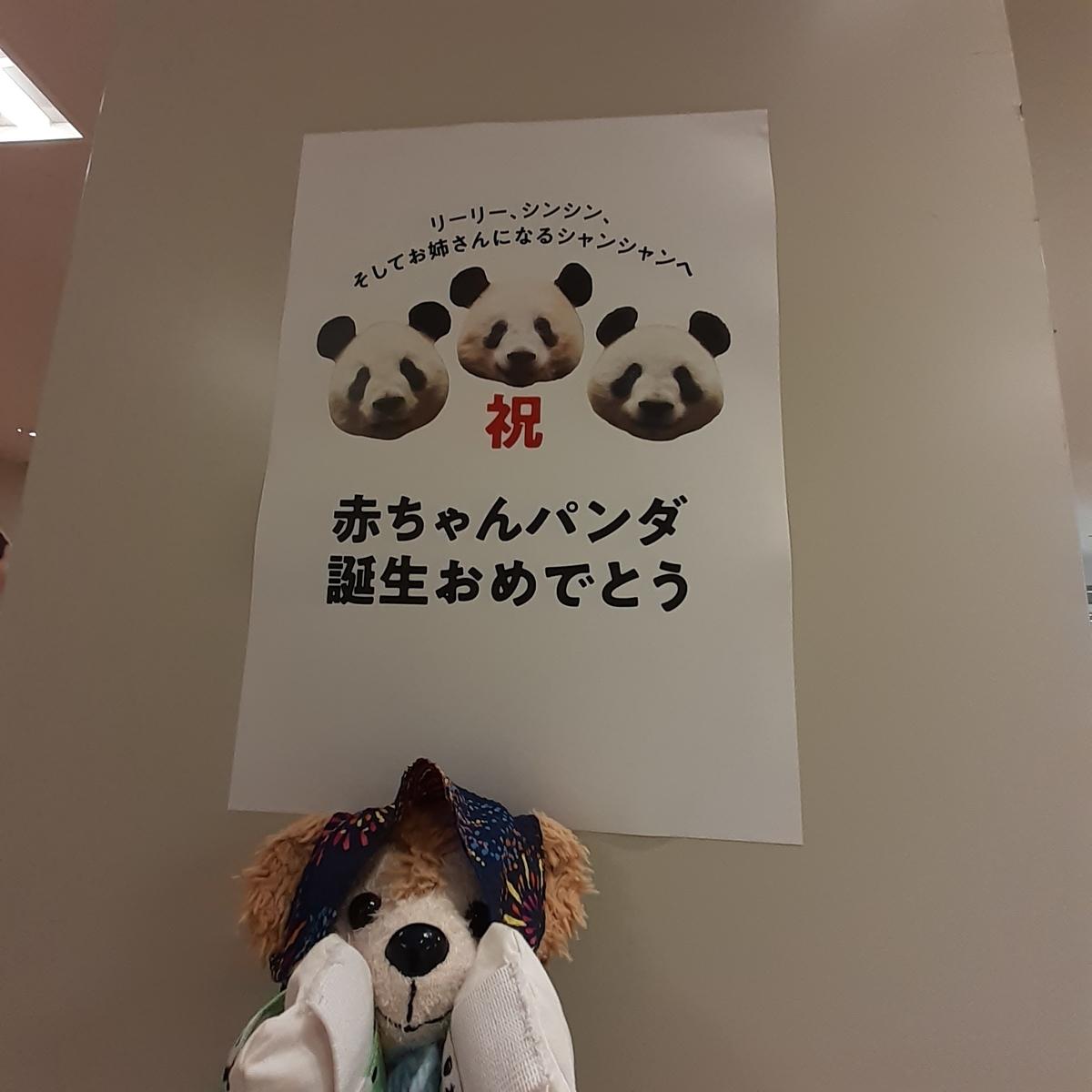 f:id:yumenomaihama:20210625114128j:plain