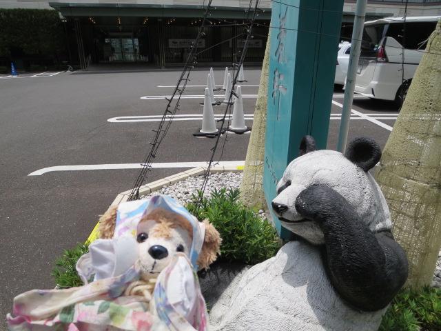 f:id:yumenomaihama:20210628161956j:plain