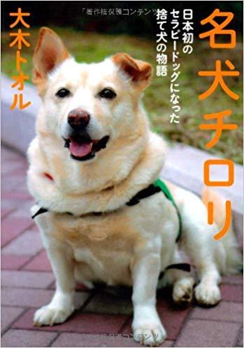 f:id:yumenotsubasa:20191105184232j:plain