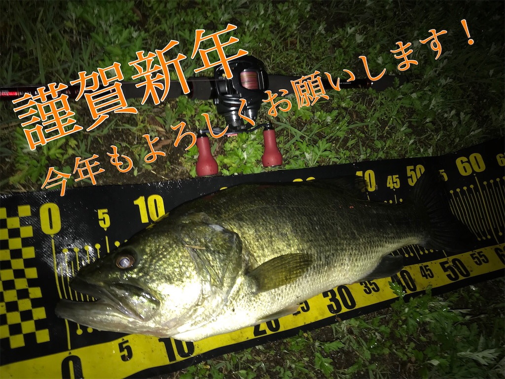 f:id:yumeoi_osn:20190105033548j:image