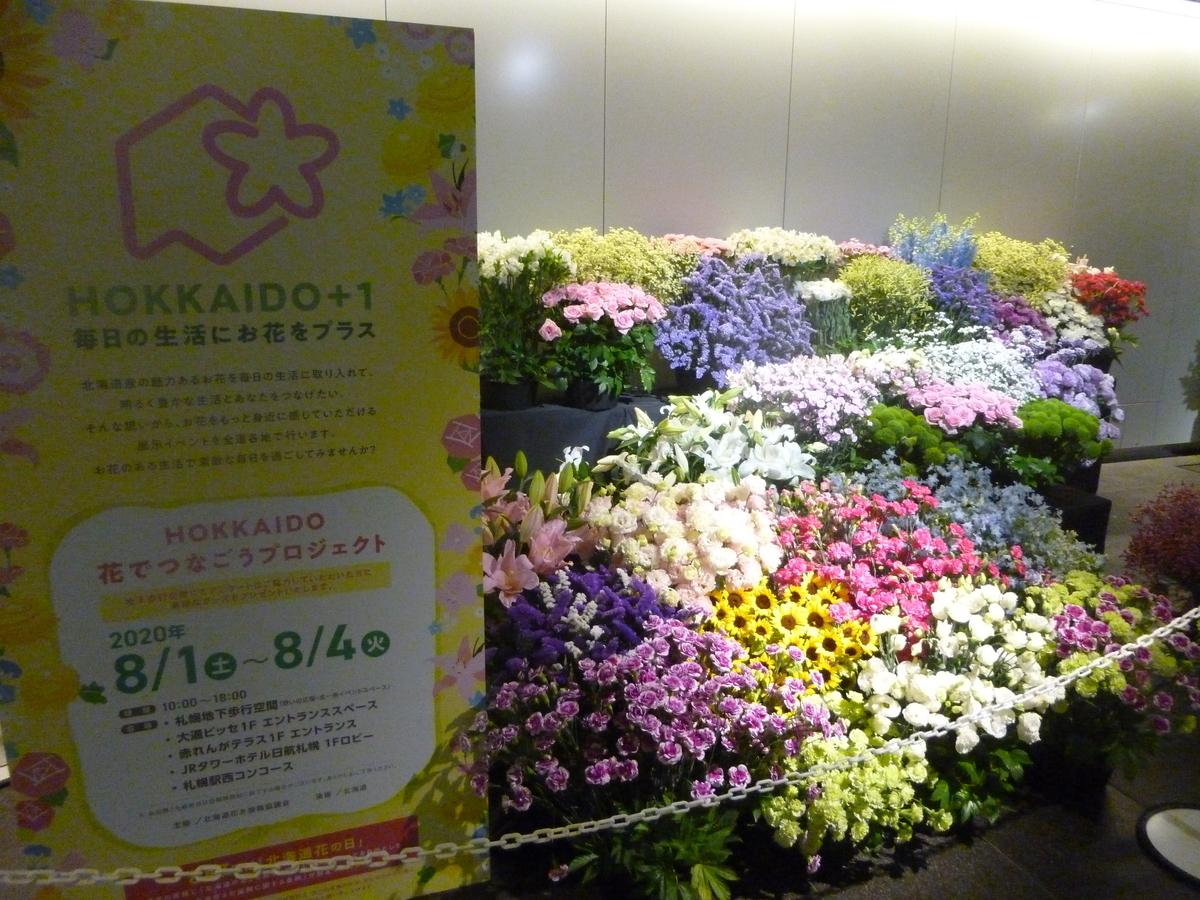 f:id:yumesakisuzu:20200802053036j:plain