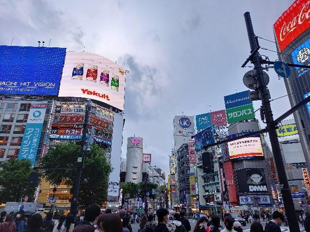 f:id:yumesakisuzu:20210408195050j:image