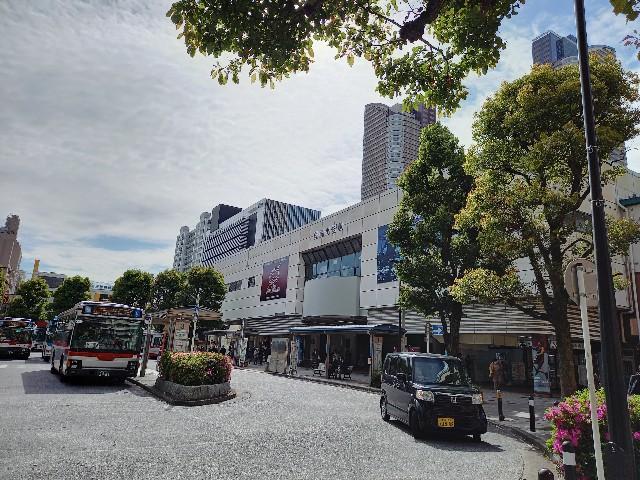 f:id:yumesakisuzu:20210416213159j:image