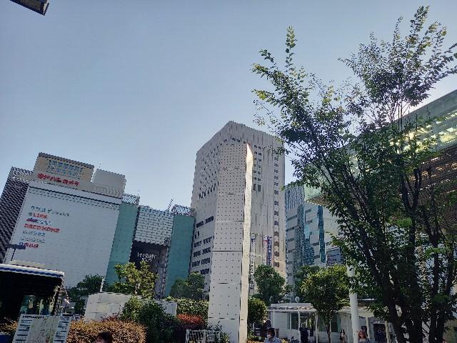 f:id:yumesakisuzu:20210609190154j:image