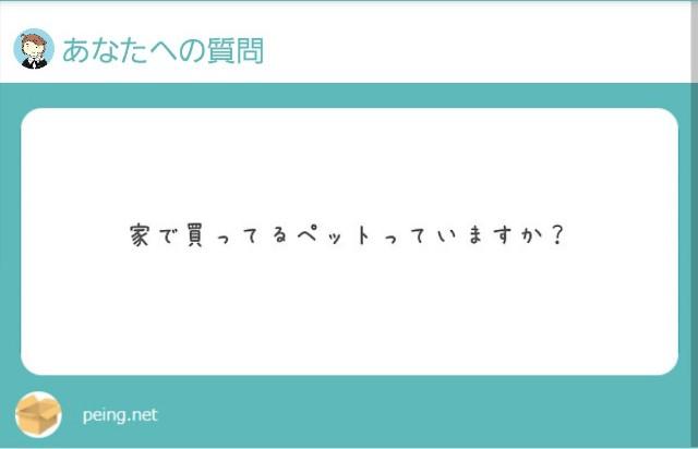 f:id:yumesakisuzu:20210728182656j:image