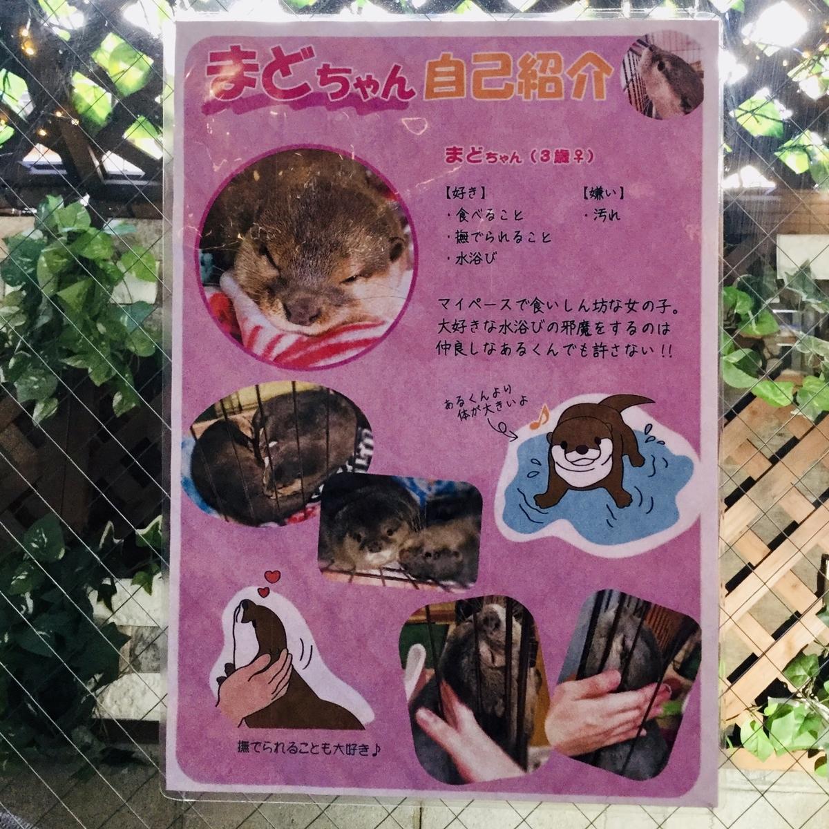 f:id:yumeusagiyukiusagi:20200109233719j:plain