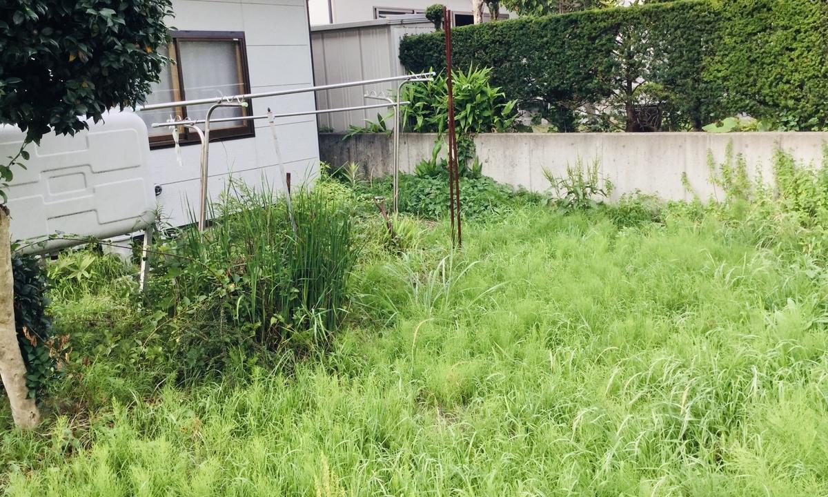 f:id:yumeusagiyukiusagi:20200529122950j:plain