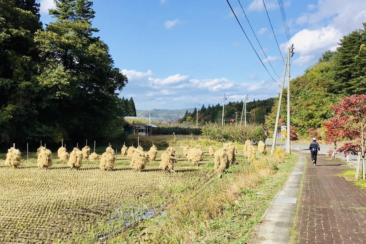 f:id:yumeusagiyukiusagi:20201025054354j:plain