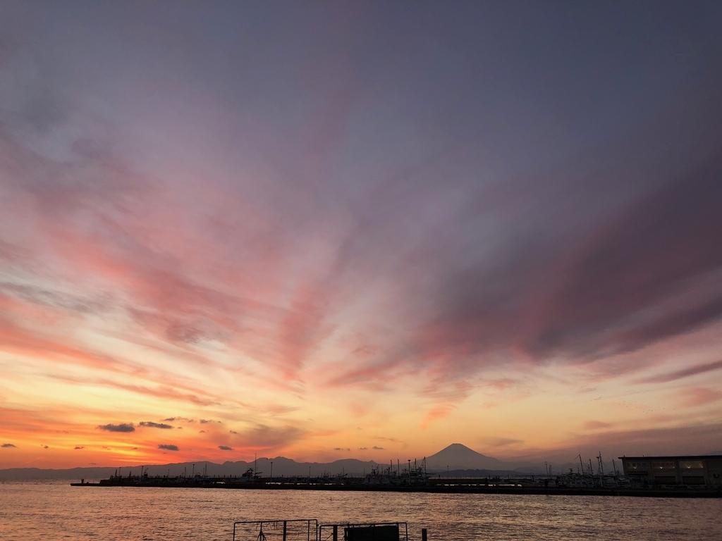 f:id:yumeyamaguchi:20181125224101j:plain