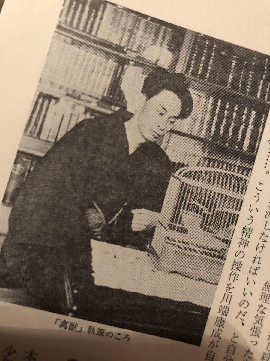 f:id:yumeyamaguchi:20190526230752j:plain