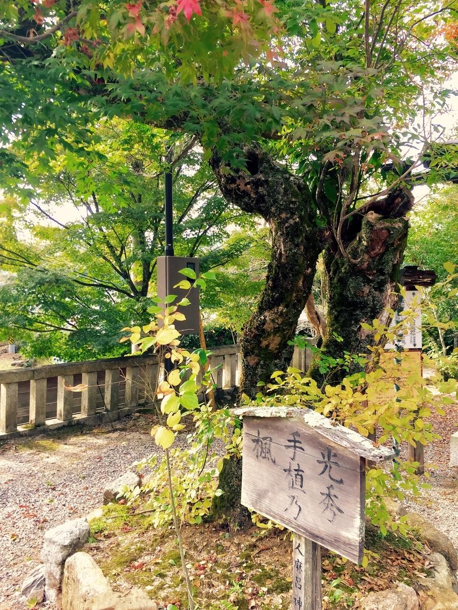 f:id:yumeyamaguchi:20200126194315j:plain