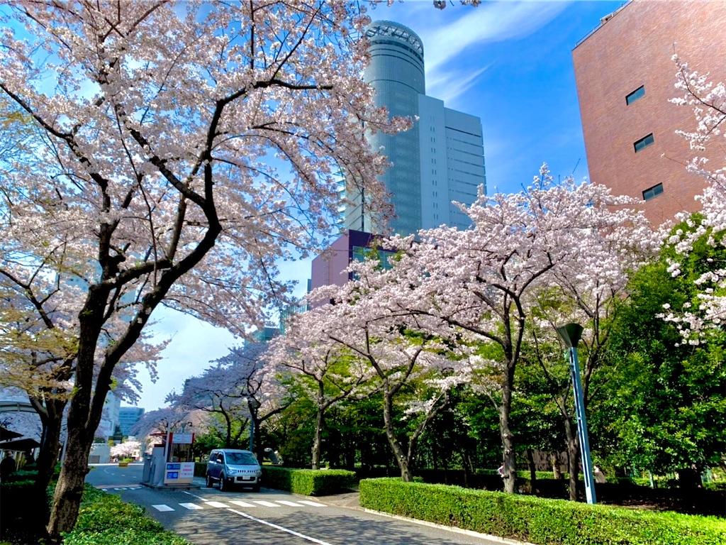 f:id:yumeyamaguchi:20210329221850j:image