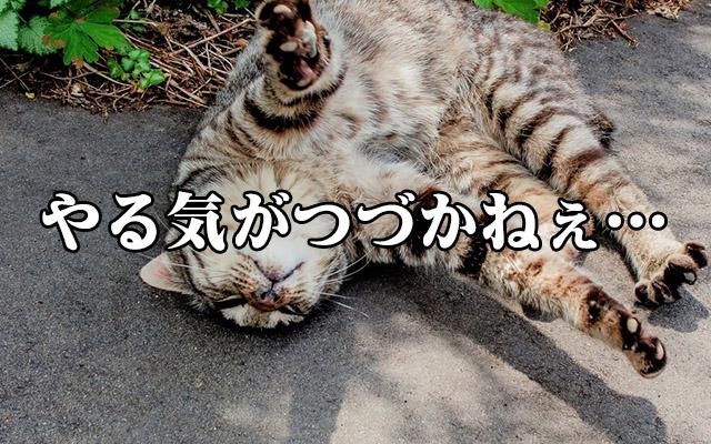 f:id:yumezyuku:20180528233257j:plain